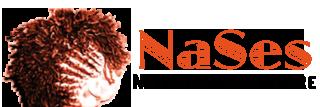 NaSes Natural Hair Care Studio